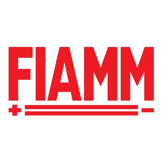 Batterie Fiamm Image